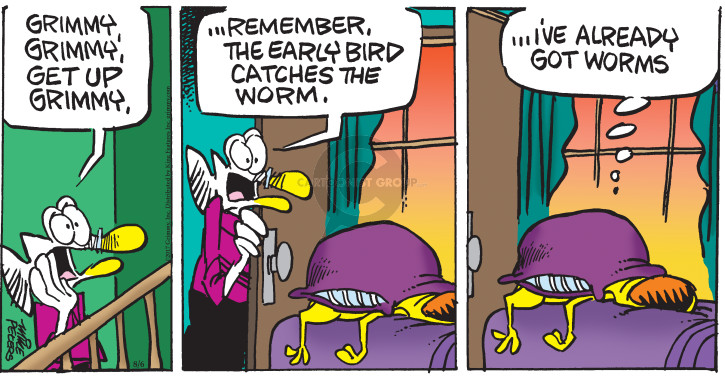 Comic Strip Mike Peters  Mother Goose and Grimm 2017-08-06 catch