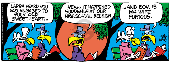 Comic Strip Mike Peters  Mother Goose and Grimm 2017-08-08 happen