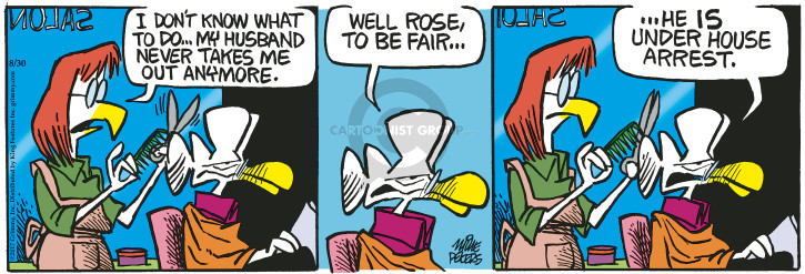 Comic Strip Mike Peters  Mother Goose and Grimm 2017-08-30 house