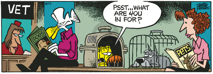 Comic Strip Mike Peters  Mother Goose and Grimm 2017-09-11 vet
