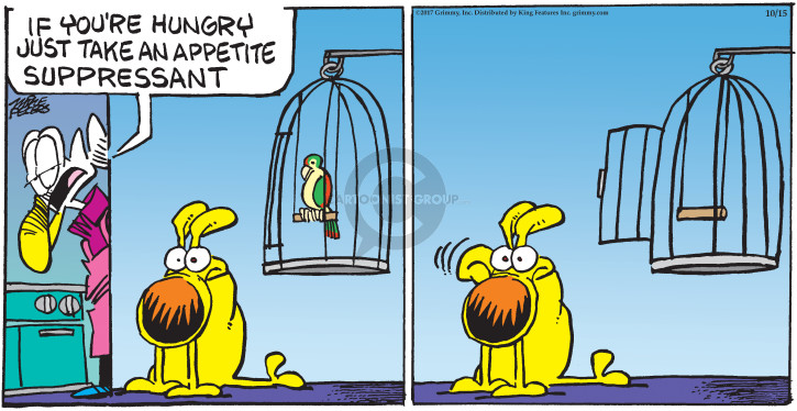 Comic Strip Mike Peters  Mother Goose and Grimm 2017-10-15 bird