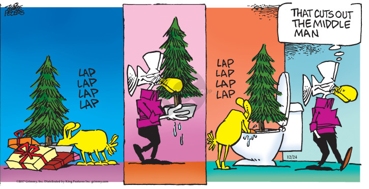 Comic Strip Mike Peters  Mother Goose and Grimm 2017-12-24 dog toilet