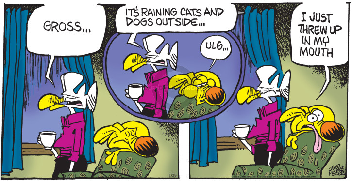 Comic Strip Mike Peters  Mother Goose and Grimm 2018-01-28 outdoor cat