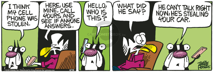 Comic Strip Mike Peters  Mother Goose and Grimm 2018-04-16 car
