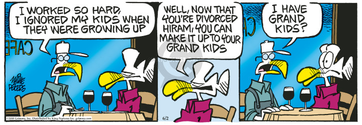 Comic Strip Mike Peters  Mother Goose and Grimm 2018-06-02 divorce