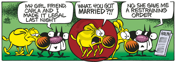 Comic Strip Mike Peters  Mother Goose and Grimm 2018-06-13 friend