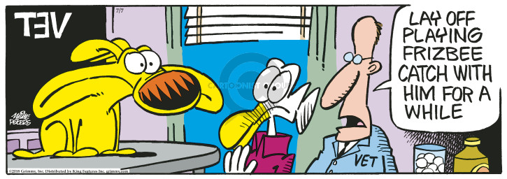 Comic Strip Mike Peters  Mother Goose and Grimm 2018-07-07 frisbee