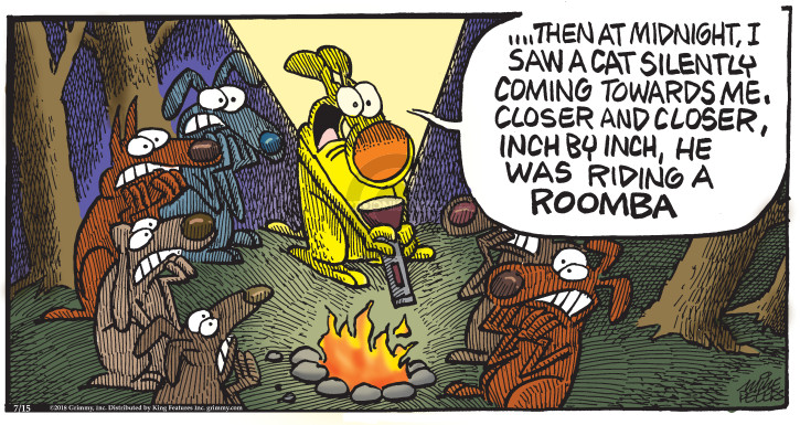 Comic Strip Mike Peters  Mother Goose and Grimm 2018-07-15 cat