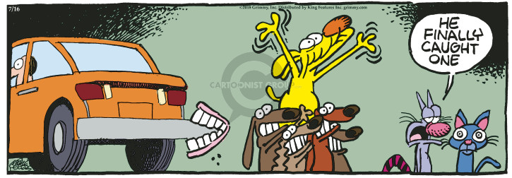 Comic Strip Mike Peters  Mother Goose and Grimm 2018-07-16 catch