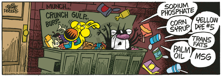 Comic Strip Mike Peters  Mother Goose and Grimm 2018-07-27 garbage