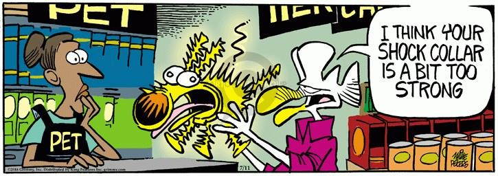 Comic Strip Mike Peters  Mother Goose and Grimm 2018-07-11 pet