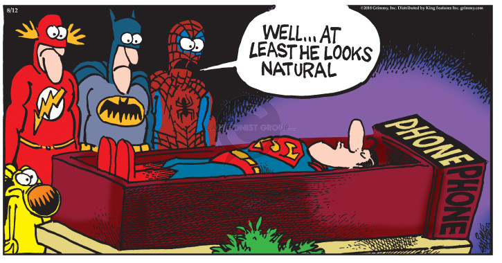 Comic Strip Mike Peters  Mother Goose and Grimm 2018-08-12 superhero