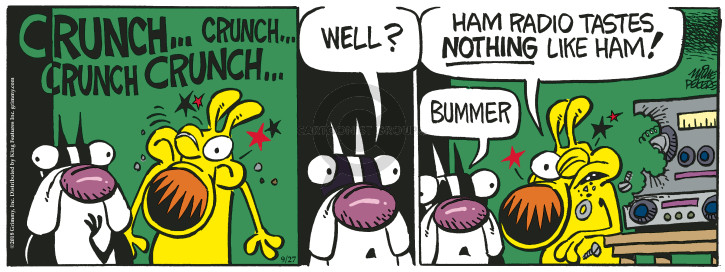 Comic Strip Mike Peters  Mother Goose and Grimm 2018-09-27 nothing