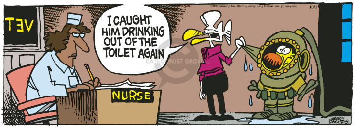 Comic Strip Mike Peters  Mother Goose and Grimm 2018-10-01 toilet