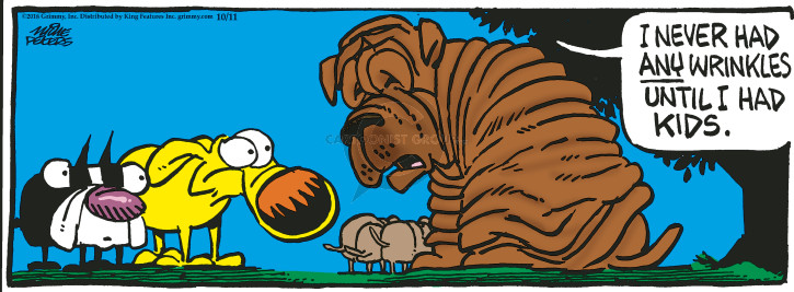 Comic Strip Mike Peters  Mother Goose and Grimm 2018-10-11 wrinkle