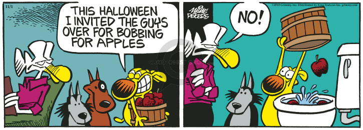 Comic Strip Mike Peters  Mother Goose and Grimm 2018-11-01 toilet