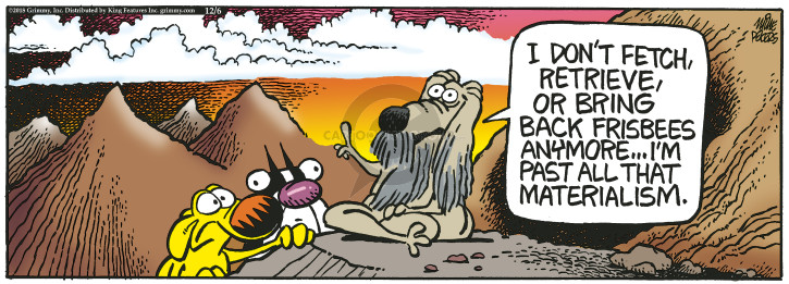 Comic Strip Mike Peters  Mother Goose and Grimm 2018-12-06 frisbee