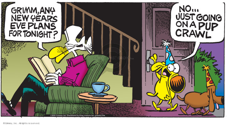 Comic Strip Mike Peters  Mother Goose and Grimm 2018-12-30 New Year