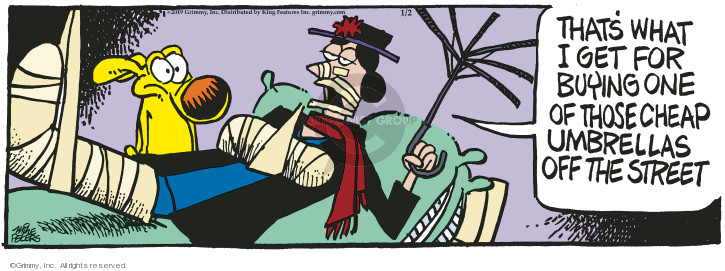 Comic Strip Mike Peters  Mother Goose and Grimm 2019-01-02 fall