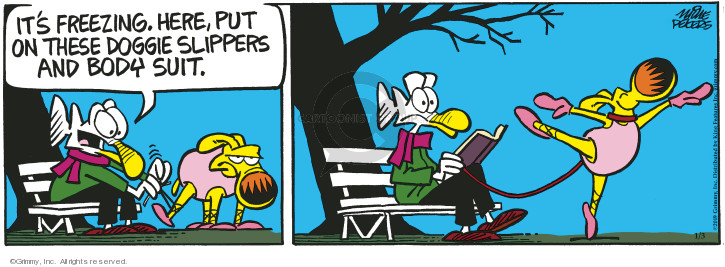 Comic Strip Mike Peters  Mother Goose and Grimm 2019-01-03 cold