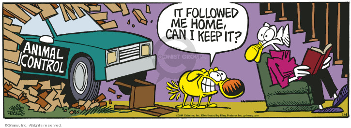 Comic Strip Mike Peters  Mother Goose and Grimm 2019-01-04 follow