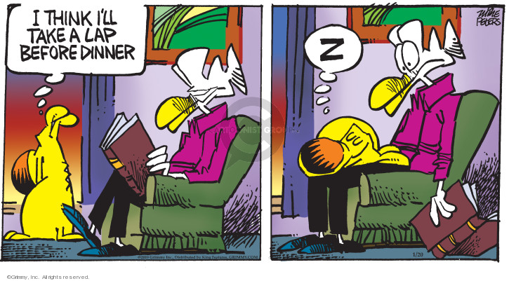 Comic Strip Mike Peters  Mother Goose and Grimm 2019-01-20 lap dog