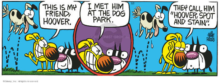 Comic Strip Mike Peters  Mother Goose and Grimm 2019-02-02 park
