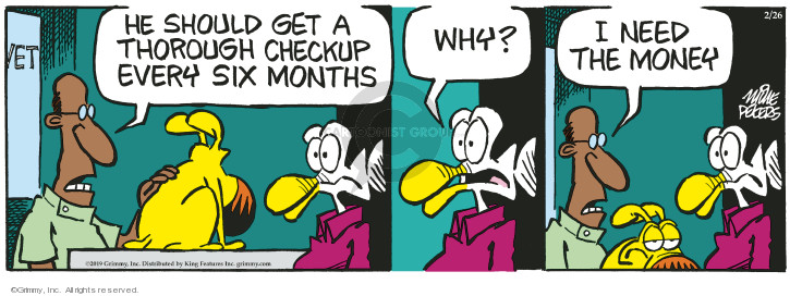 Comic Strip Mike Peters  Mother Goose and Grimm 2019-02-26 veterinarian