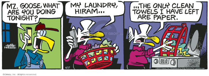 Comic Strip Mike Peters  Mother Goose and Grimm 2019-04-17 housekeeping