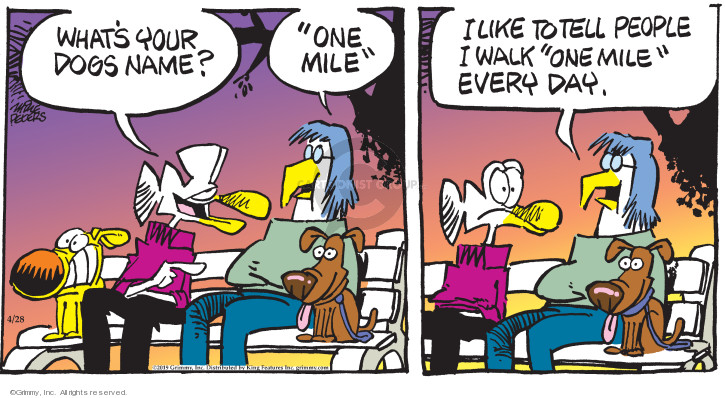 Cartoonist Mike Peters  Mother Goose and Grimm 2019-04-28 goose