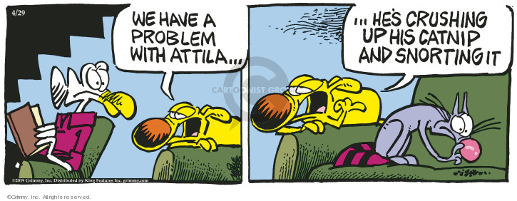 Comic Strip Mike Peters  Mother Goose and Grimm 2019-04-29 problem