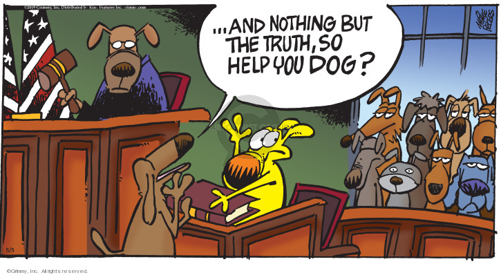 Comic Strip Mike Peters  Mother Goose and Grimm 2019-05-05 court