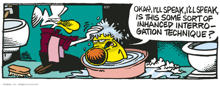 Comic Strip Mike Peters  Mother Goose and Grimm 2019-05-17 dog