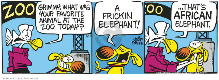 Comic Strip Mike Peters  Mother Goose and Grimm 2019-05-22 zoo