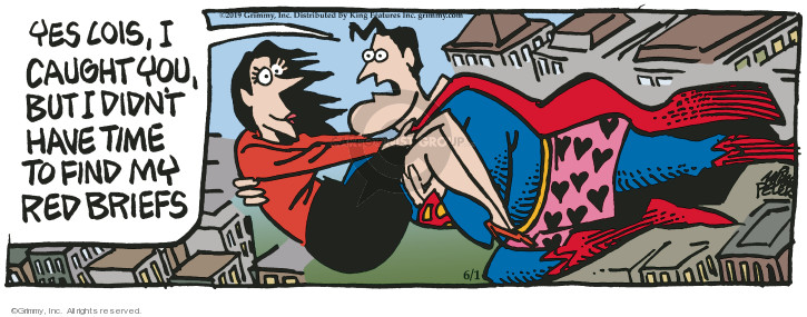 Cartoonist Mike Peters  Mother Goose and Grimm 2019-06-01 goose