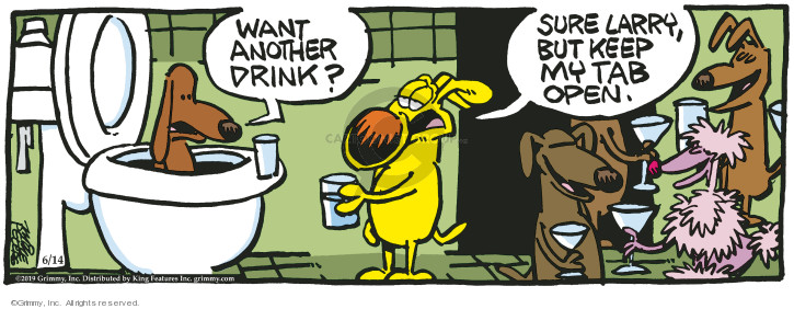 Comic Strip Mike Peters  Mother Goose and Grimm 2019-06-14 toilet