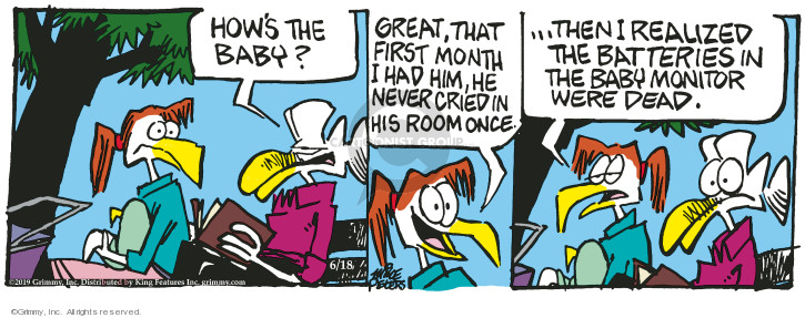 Cartoonist Mike Peters  Mother Goose and Grimm 2019-06-18 great