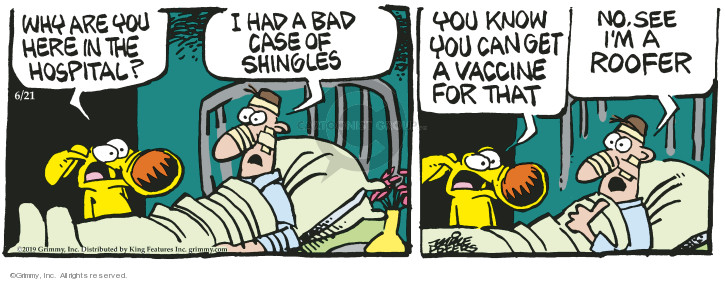 Comic Strip Mike Peters  Mother Goose and Grimm 2019-06-21 disorder
