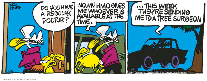 Comic Strip Mike Peters  Mother Goose and Grimm 2019-06-22 medical