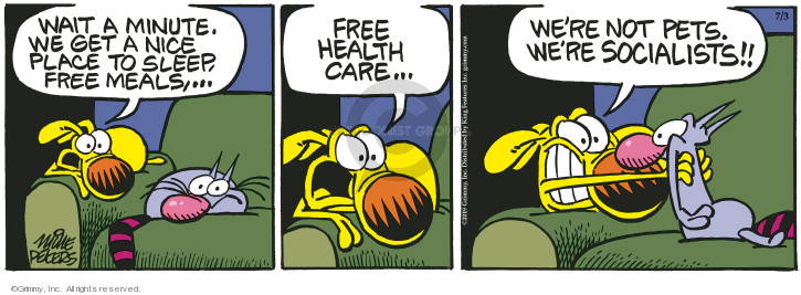 Comic Strip Mike Peters  Mother Goose and Grimm 2019-07-03 health care