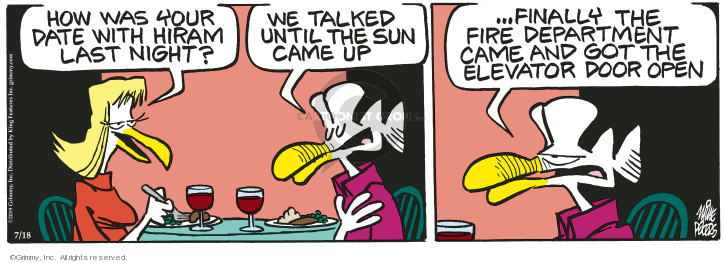 Comic Strip Mike Peters  Mother Goose and Grimm 2019-07-18 date