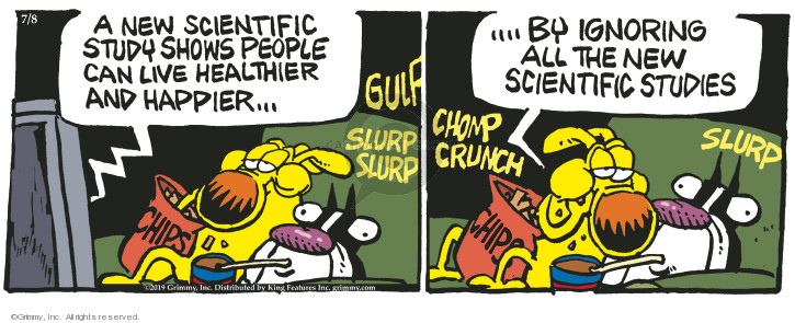 Comic Strip Mike Peters  Mother Goose and Grimm 2019-07-08 science