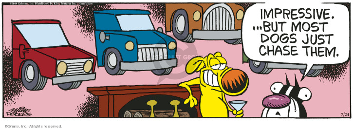Comic Strip Mike Peters  Mother Goose and Grimm 2019-07-24 vehicle