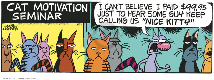 Comic Strip Mike Peters  Mother Goose and Grimm 2019-08-23 cat