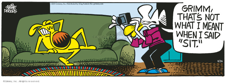 Comic Strip Mike Peters  Mother Goose and Grimm 2019-08-26 dog