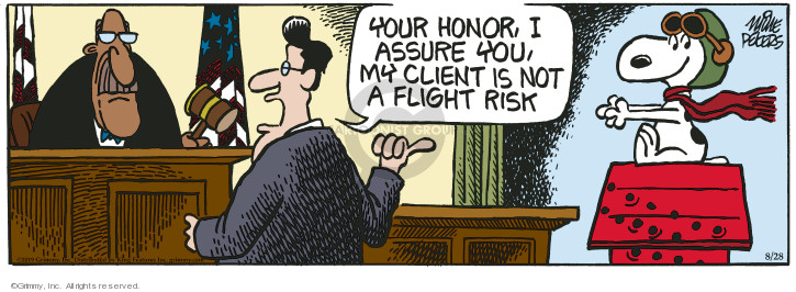 Cartoonist Mike Peters  Mother Goose and Grimm 2019-08-28 flight