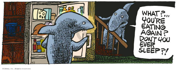 Comic Strip Mike Peters  Mother Goose and Grimm 2019-09-02 ocean animal