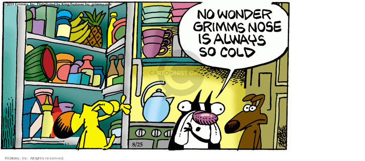 Comic Strip Mike Peters  Mother Goose and Grimm 2019-08-25 cold