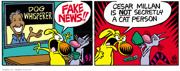 Comic Strip Mike Peters  Mother Goose and Grimm 2019-09-23 television news