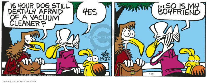 Comic Strip Mike Peters  Mother Goose and Grimm 2019-10-05 fear